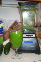 blended salad in blendtec blender